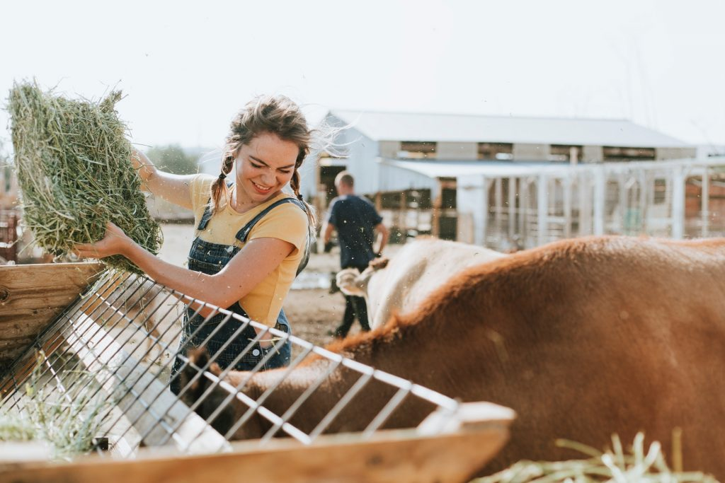 young-woman-farmer-cattle
